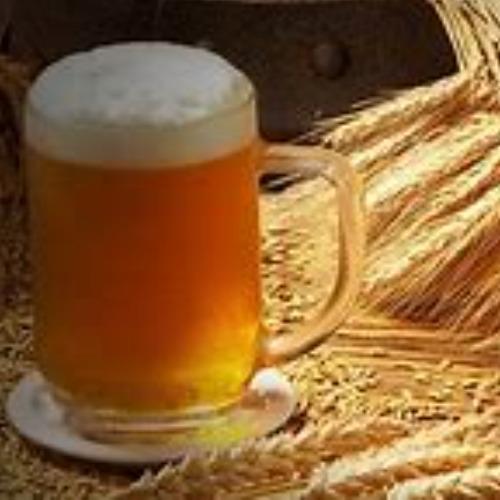 Pilot Belgian Wheat Beer Logo